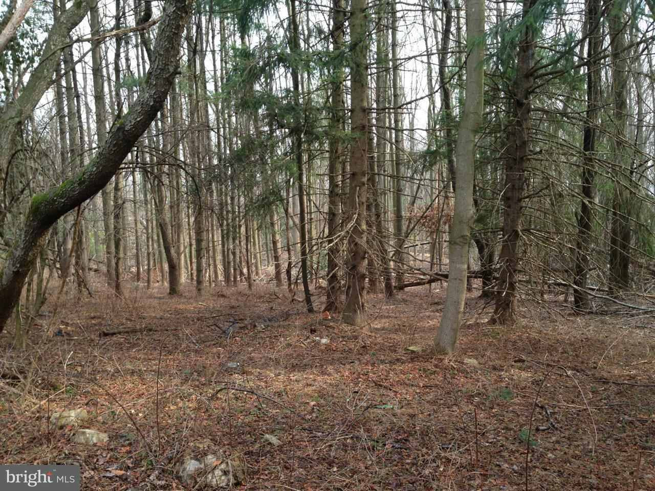 Land for Sale at NORWOOD Road NORWOOD Road Silver Spring, Maryland 20903 United States