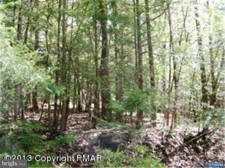 Additional photo for property listing at 403 WILLIAMSON Drive  East Stroudsburg, Пенсильвания 18301 Соединенные Штаты