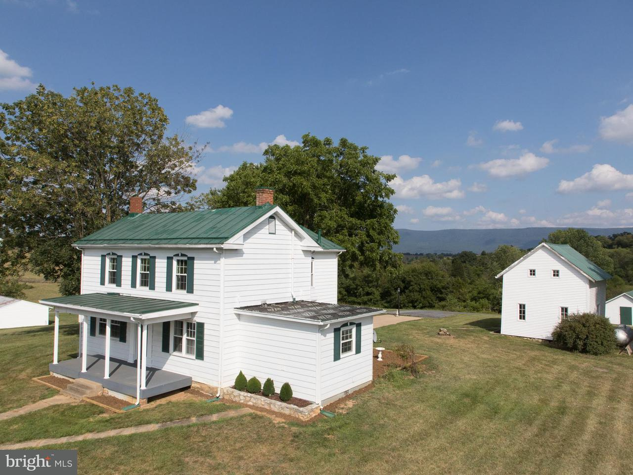 Single Family for Sale at 3345 Conicville Rd Mount Jackson, Virginia 22842 United States