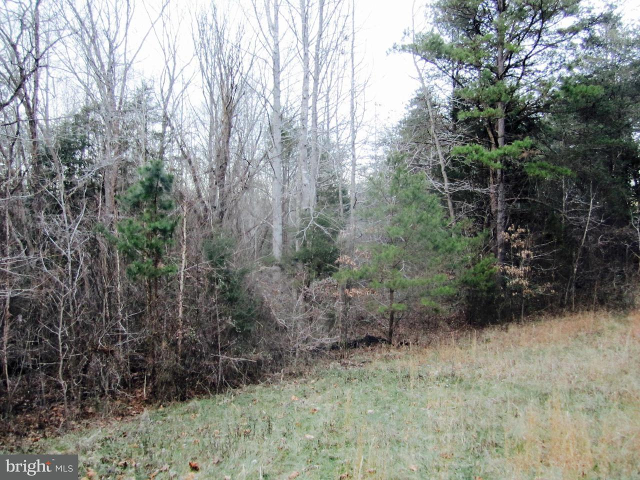 Land for Sale at 0 Highland Ln Montpelier, Virginia 23192 United States