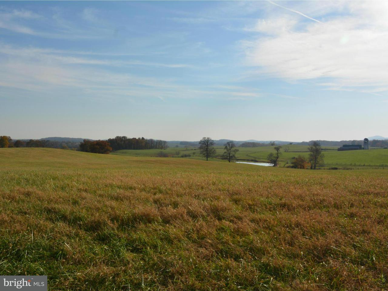 Land for Sale at PARCEL C ROKEBY Road PARCEL C ROKEBY Road Upperville, Virginia 20184 United States