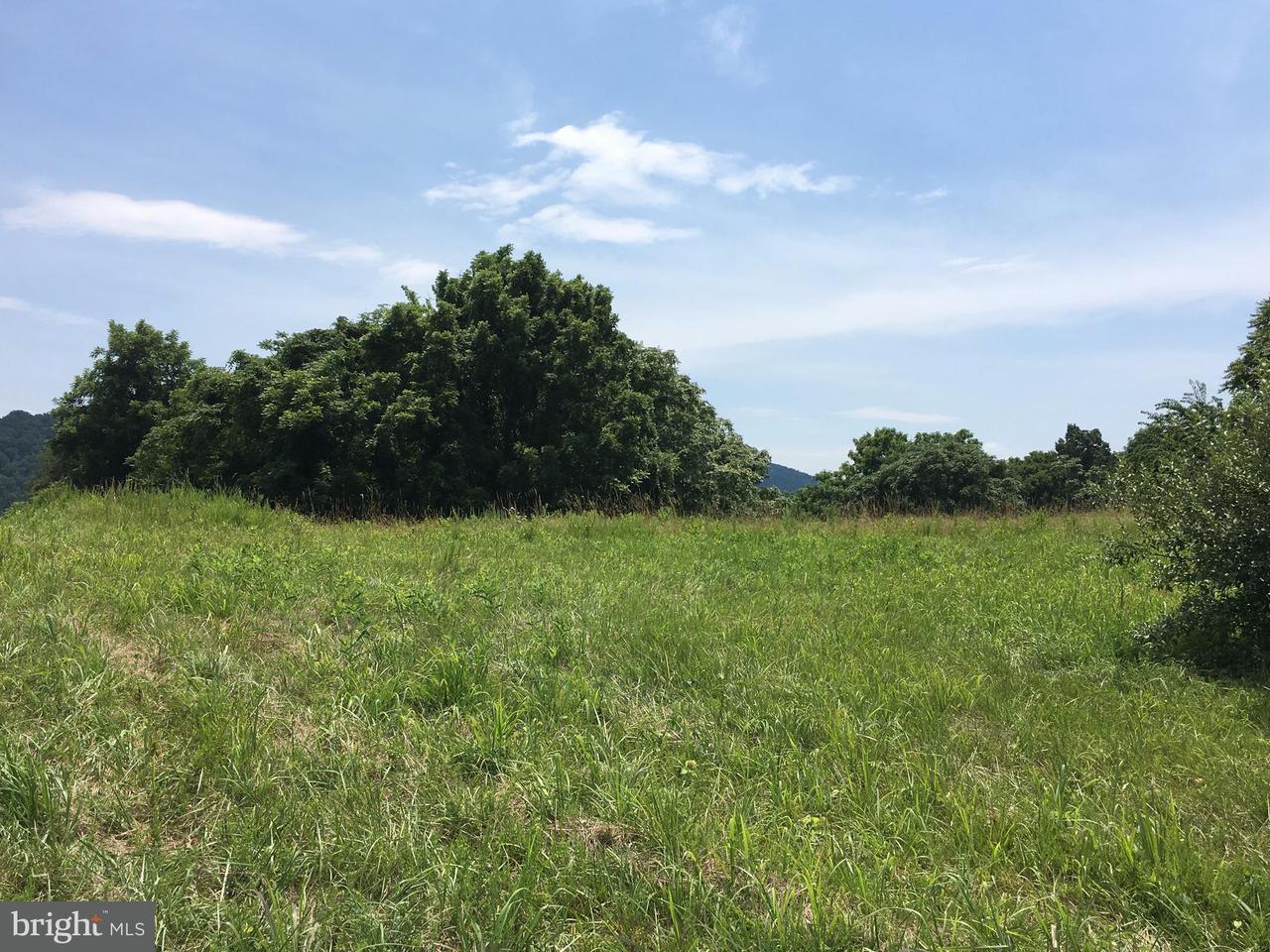 Land for Sale at 0 John Marshall Highway Delaplane, Virginia 20144 United States