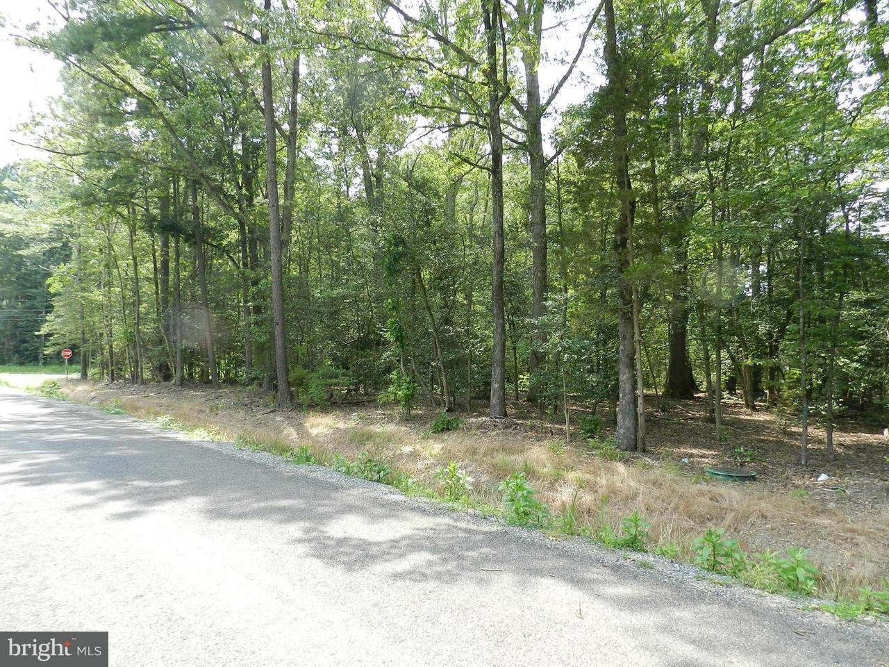 Land for Sale at Placid Point Rd. Colonial Beach, Virginia 22443 United States