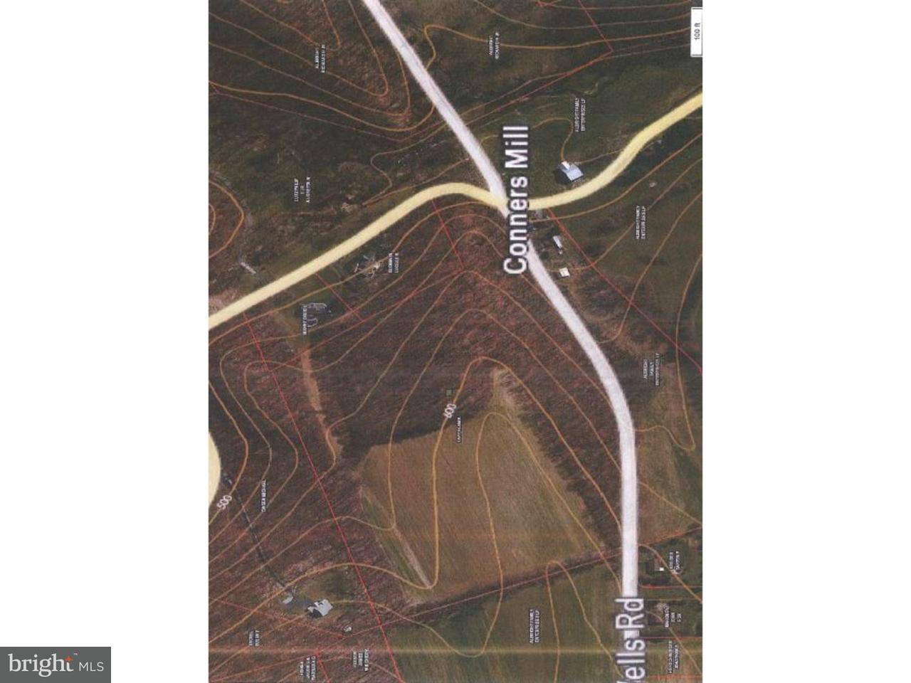 土地,用地 为 销售 在 DRY WELLS Road Quarryville, 宾夕法尼亚州 17566 美国
