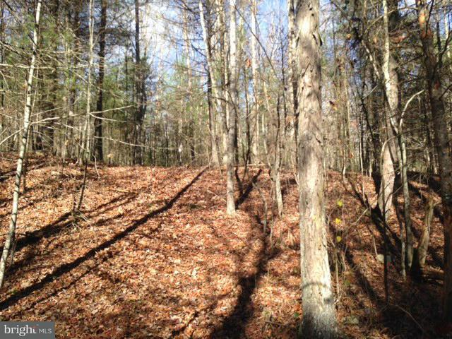 Land for Sale at Routes 606 And 607 - Row Shenandoah, Virginia 22849 United States