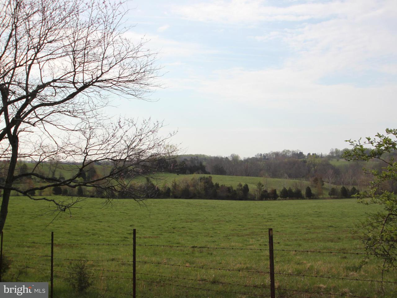 Land for Sale at RYLAND CHAPEL Road RYLAND CHAPEL Road Rixeyville, Virginia 22737 United States