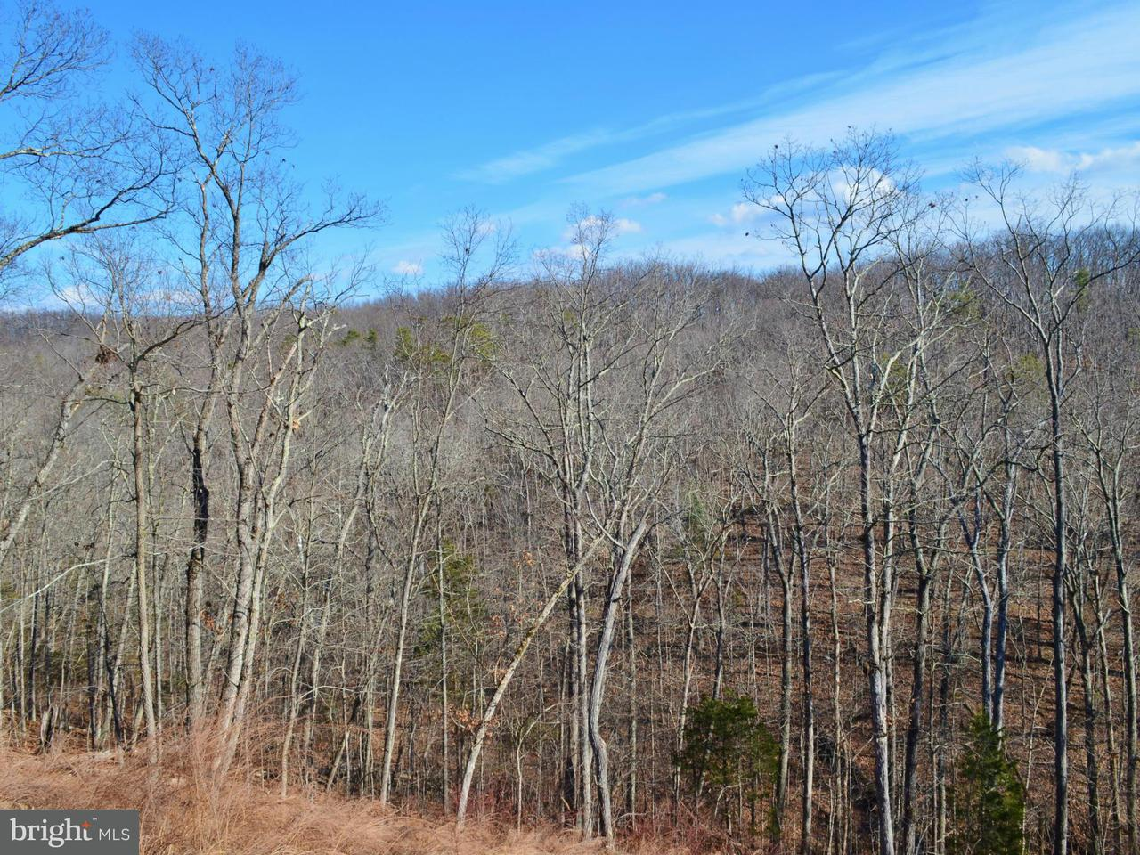 Land for Sale at Lot 28 Comforter Ln Middletown, Virginia 22645 United States