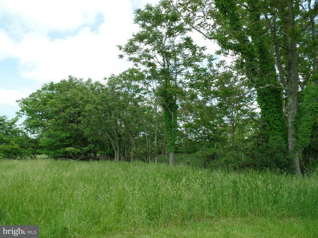 Additional photo for property listing at ARDEN NOLLVILLE Road ARDEN NOLLVILLE Road Inwood, Virginie-Occidentale 25428 États-Unis