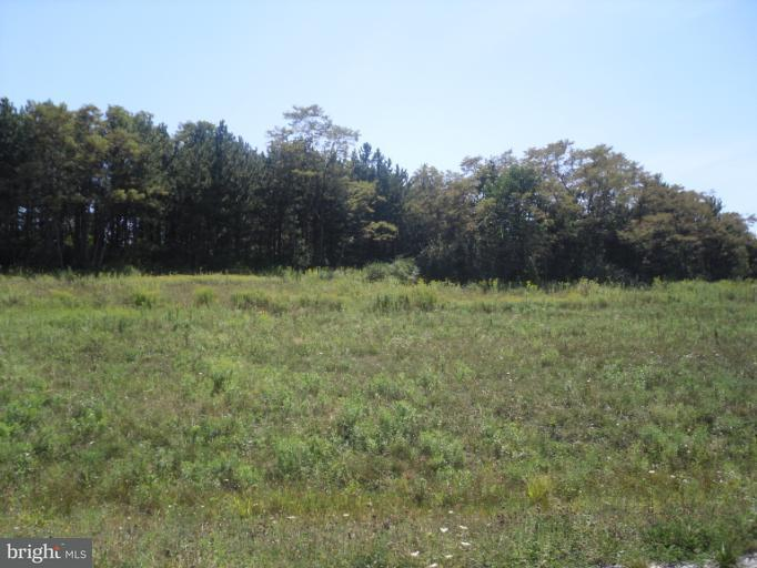 Additional photo for property listing at Lot 25 Summit Cir  Frostburg, Maryland 21532 United States