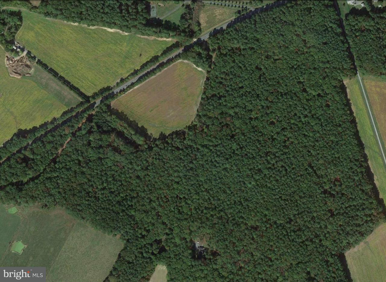 Land for Sale at Mayport Rd Bozman, Maryland 21612 United States