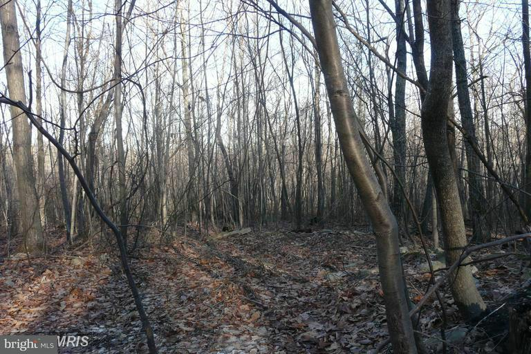 Additional photo for property listing at Lot D Chestnut Drive  Augusta, West Virginia 26704 United States