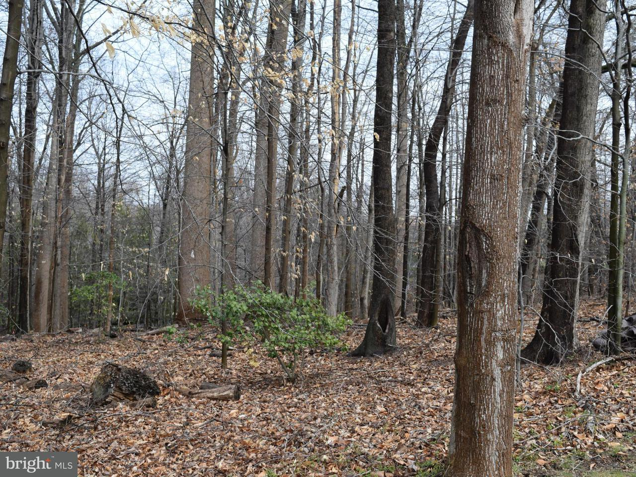 Land for Sale at 893 GEORGETOWN RIDGE Court 893 GEORGETOWN RIDGE Court McLean, Virginia 22102 United States