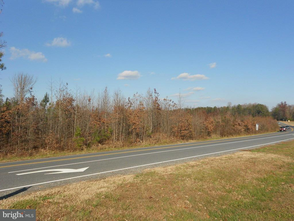 Land for Sale at LADYSMITH Road LADYSMITH Road Ruther Glen, Virginia 22546 United States