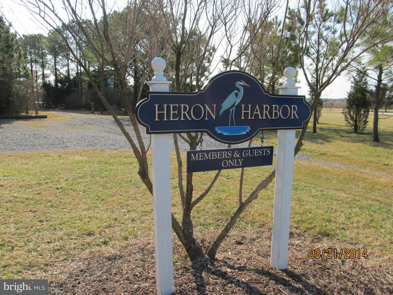 Additional photo for property listing at 5219 Heron Road  Cambridge, Maryland 21613 United States