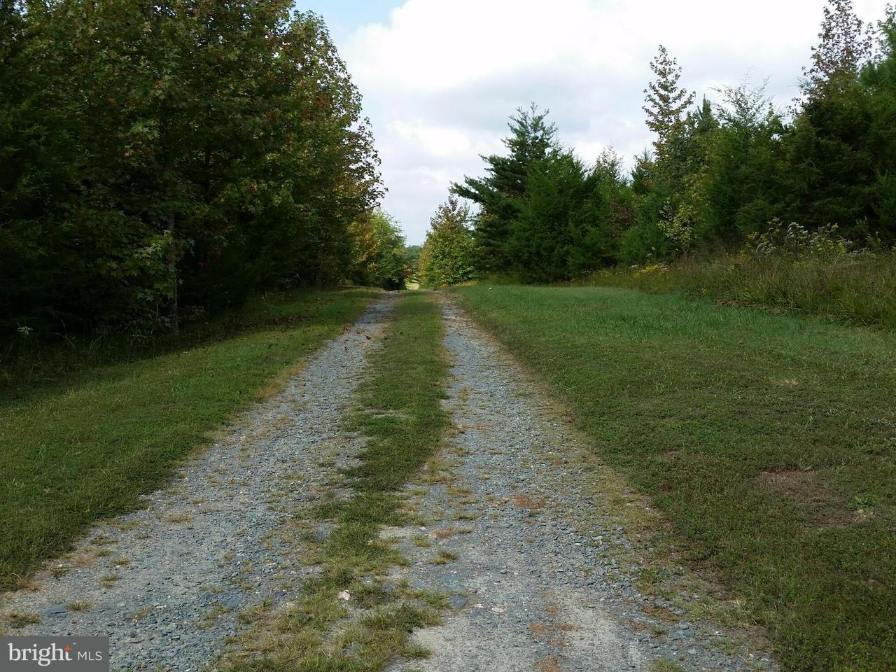Land for Sale at 1765 Georges Mill Rd Palmyra, Virginia 22963 United States