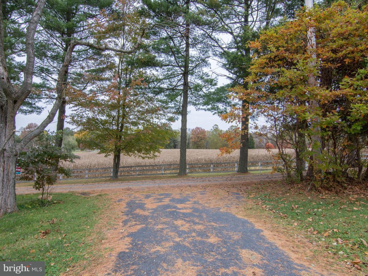 Additional photo for property listing at 651 PRIESTFORD Road 651 PRIESTFORD Road Churchville, Maryland 21028 Estados Unidos