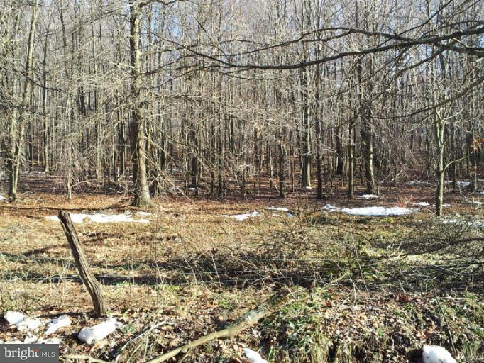 Land for Sale at 6 Lynndale Rd Oakland, Maryland 21550 United States
