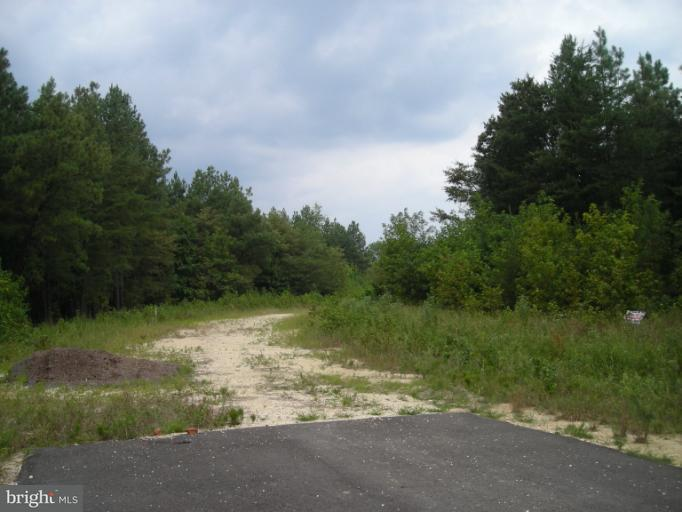 Land for Sale at 13455 Plantation Pines Pl Waldorf, Maryland 20601 United States