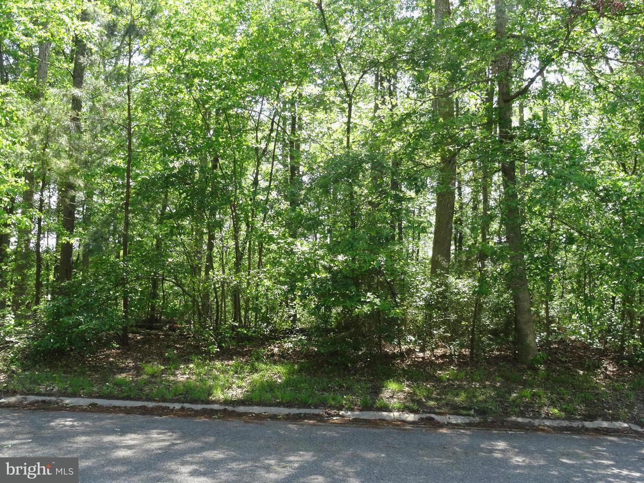 Land for Sale at 830 White Oaks Ln Pocomoke City, Maryland 21851 United States