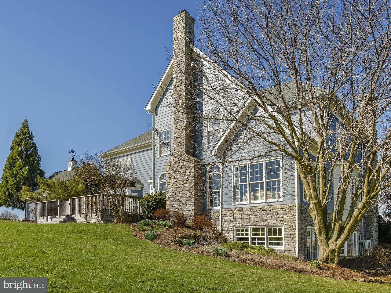 Additional photo for property listing at 16080 Gold Cup Lane 16080 Gold Cup Lane Paeonian Springs, 버지니아 20129 미국