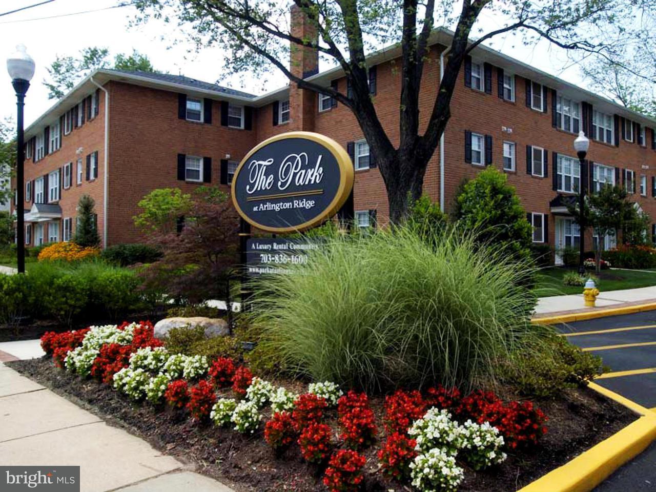 Condominium for Rent at 1800 S 26th St #101 Arlington, Virginia 22206 United States