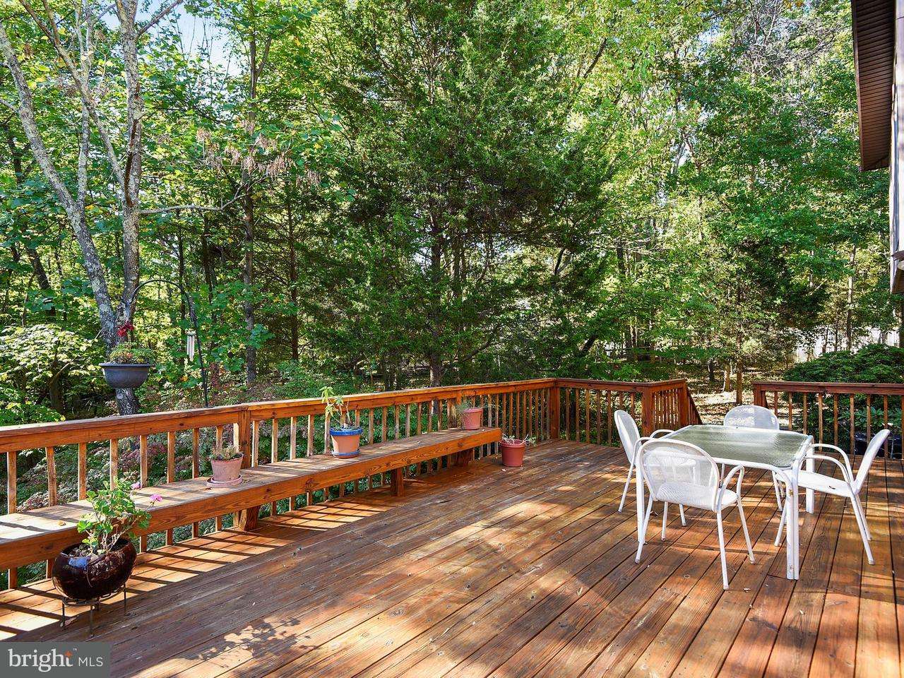 Additional photo for property listing at 10702 GREAT ARBOR Drive 10702 GREAT ARBOR Drive Potomac, Maryland 20854 United States