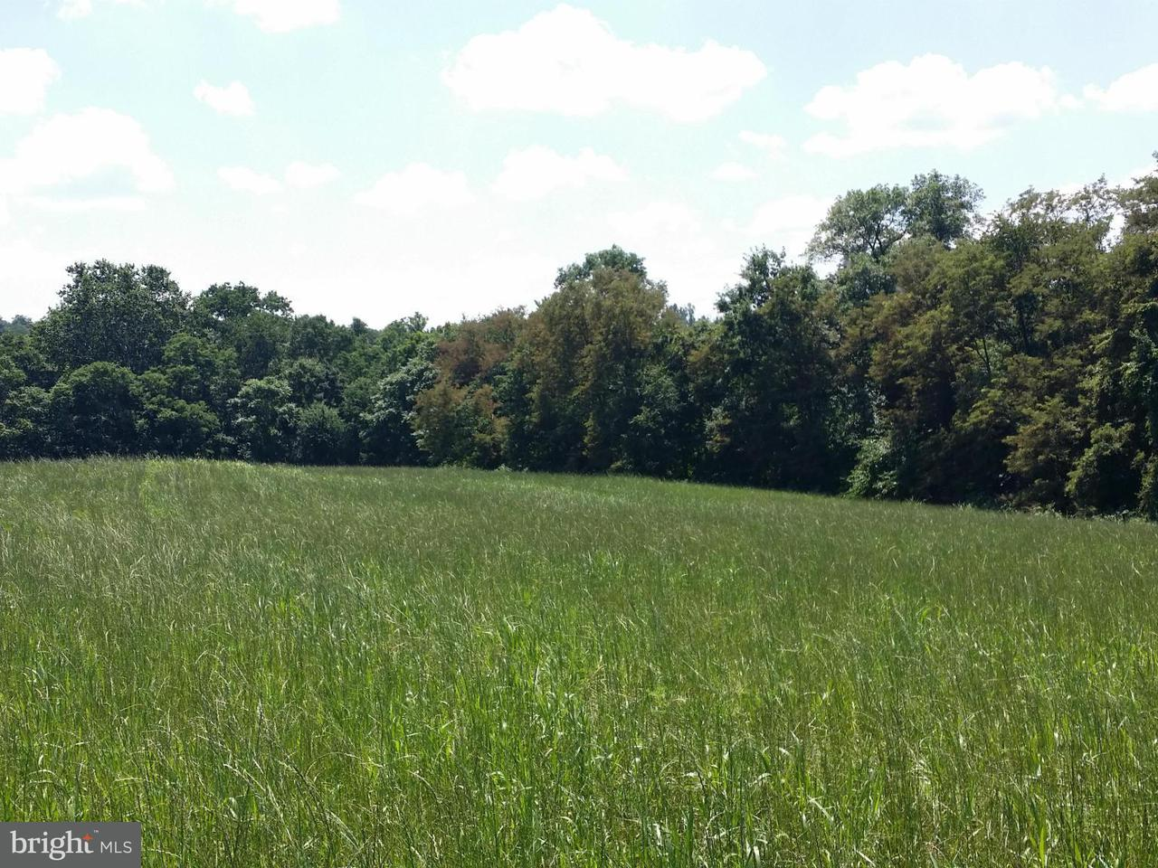 Additional photo for property listing at Burkittsville Rd  Jefferson, Maryland 21755 United States