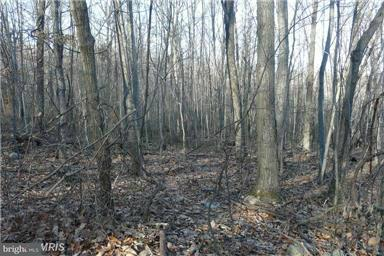 Land for Sale at Kipps Chestnut Moores Drive Augusta, West Virginia 26704 United States