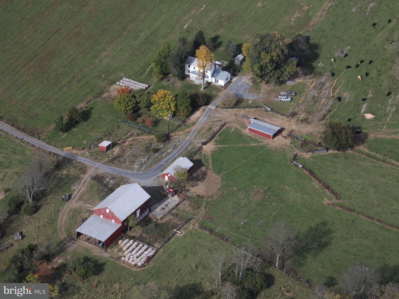 농장 용 매매 에 603 REST CHURCH Road 603 REST CHURCH Road Clear Brook, 버지니아 22624 미국