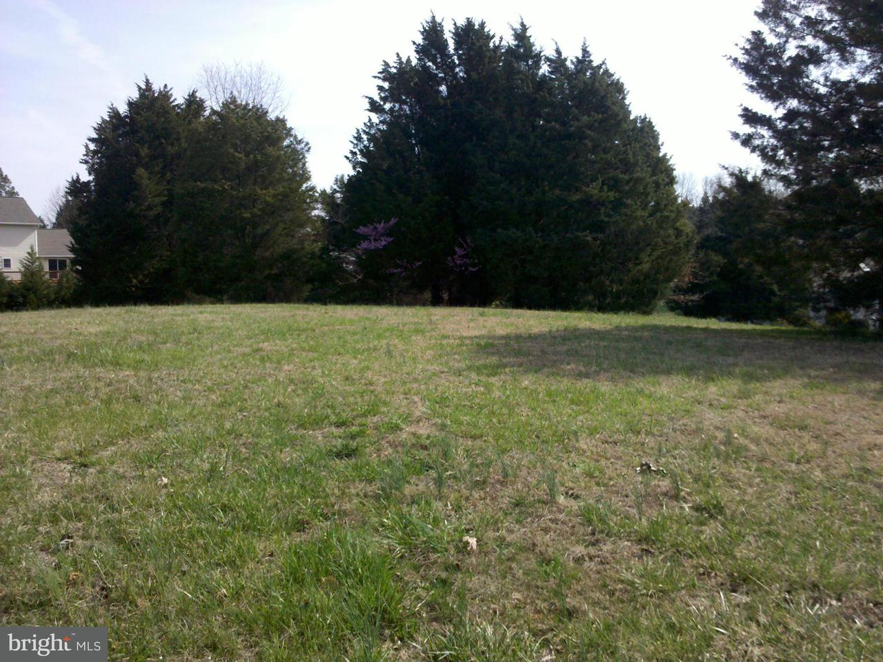 Additional photo for property listing at 0 Burruss Mill Rd  Bumpass, Virginia 23024 United States