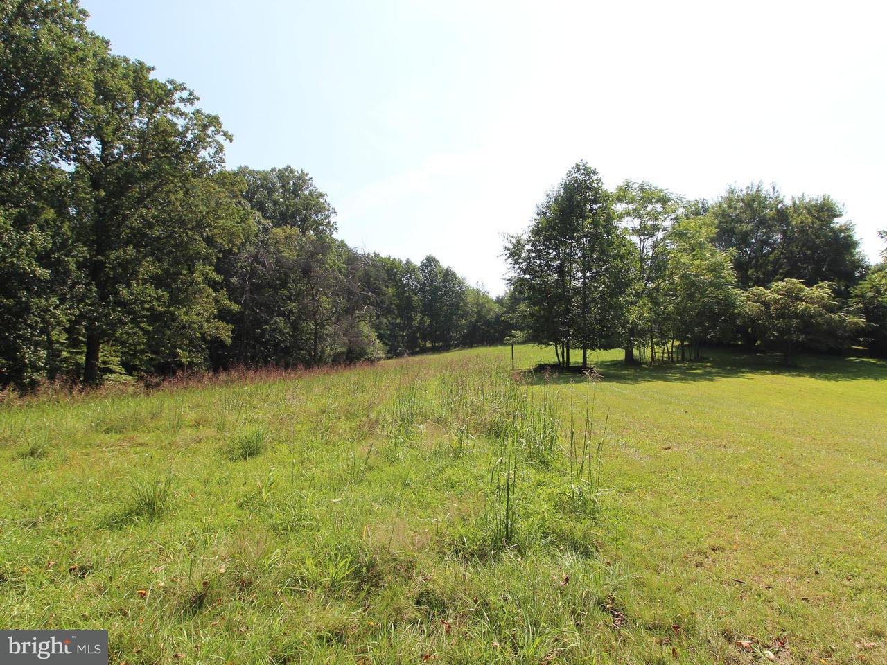 Additional photo for property listing at 15701 SANTINI Road 15701 SANTINI Road Burtonsville, 메릴랜드 20866 미국