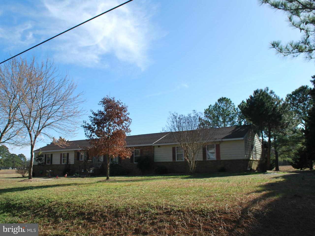 Additional photo for property listing at 22753 POT PIE Road 22753 POT PIE Road Wittman, 메릴랜드 21676 미국