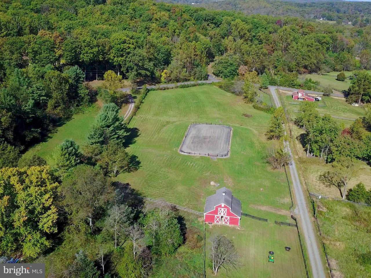 Farm for Sale at 23394 NEW MOUNTAIN Road 23394 NEW MOUNTAIN Road Aldie, Virginia 20105 United States
