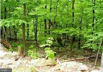Land for Sale at Jordan Run Rd Mount Storm, West Virginia 26739 United States
