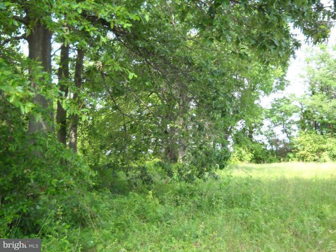 Land for Sale at Springdale Rd Bushwood, Maryland 20618 United States