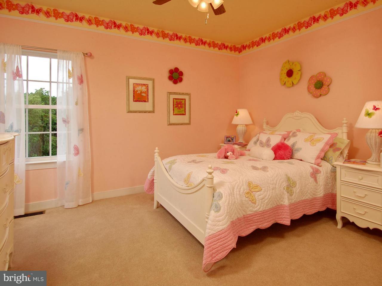 Additional photo for property listing at 603 CALDER CASTLE Court 603 CALDER CASTLE Court Parkton, Μεριλαντ 21120 Ηνωμενεσ Πολιτειεσ
