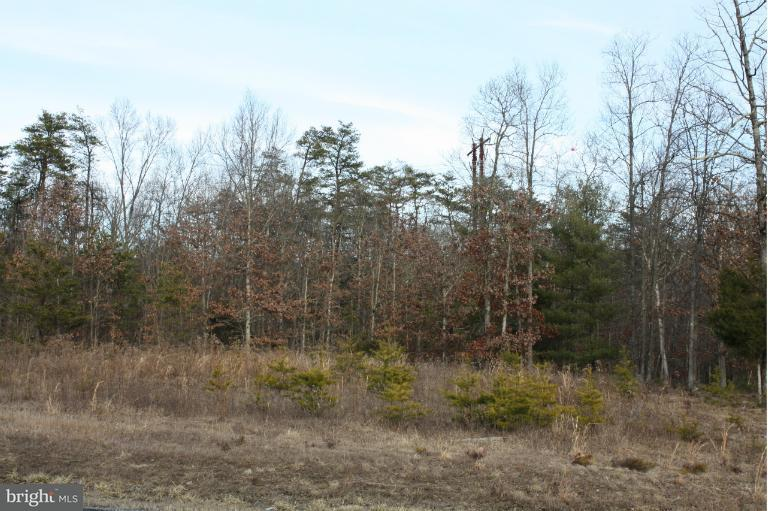 Land for Sale at Springwood Lot 31 Ln Stephens City, Virginia 22655 United States