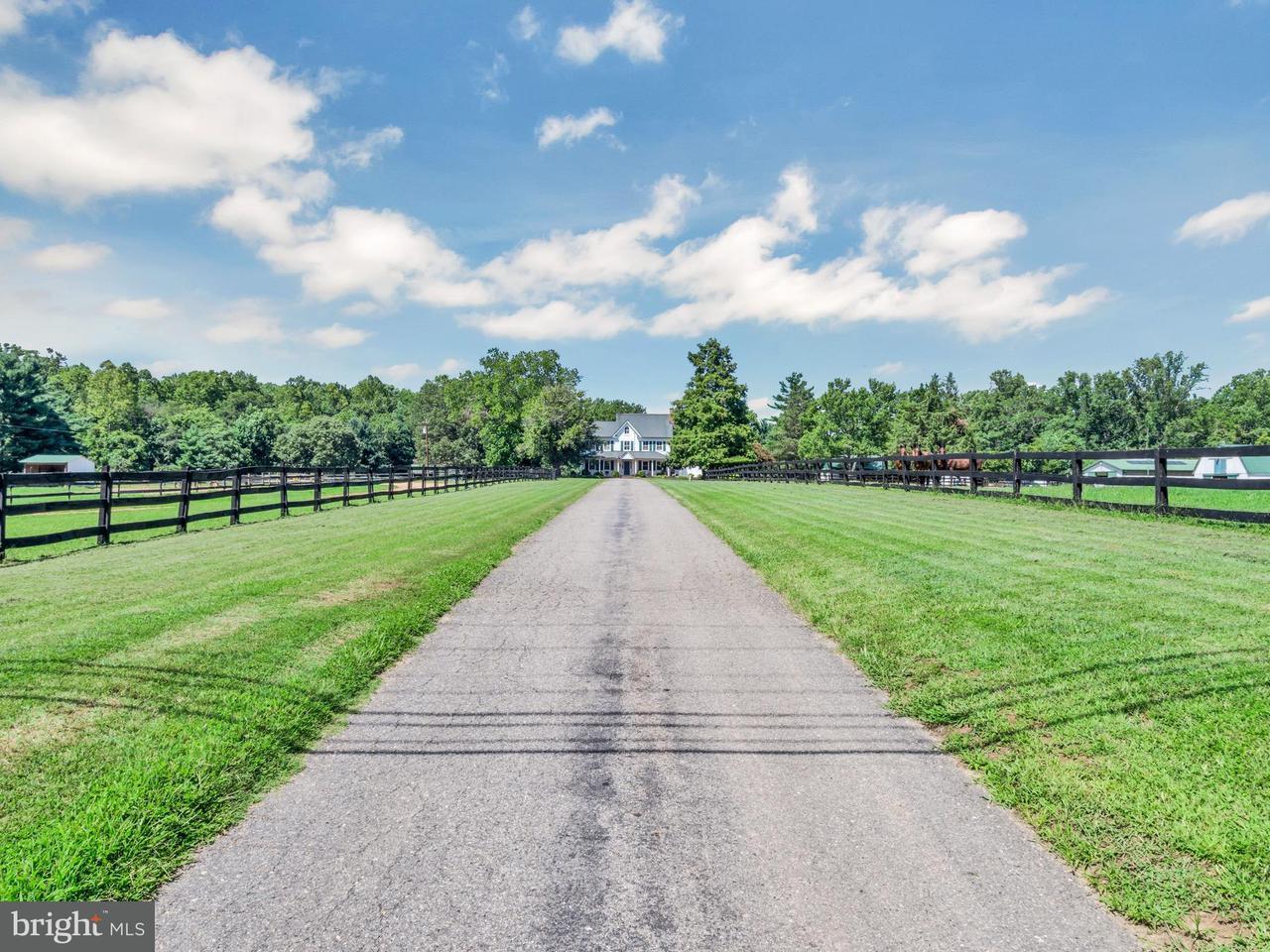 Vivienda unifamiliar por un Venta en 16340a Woodville Road 16340a Woodville Road Brandywine, Maryland 20613 Estados Unidos