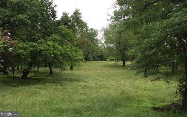 Land für Verkauf beim 101 SPEARMINT Lane 101 SPEARMINT Lane Silver Spring, Maryland 20905 Vereinigte Staaten