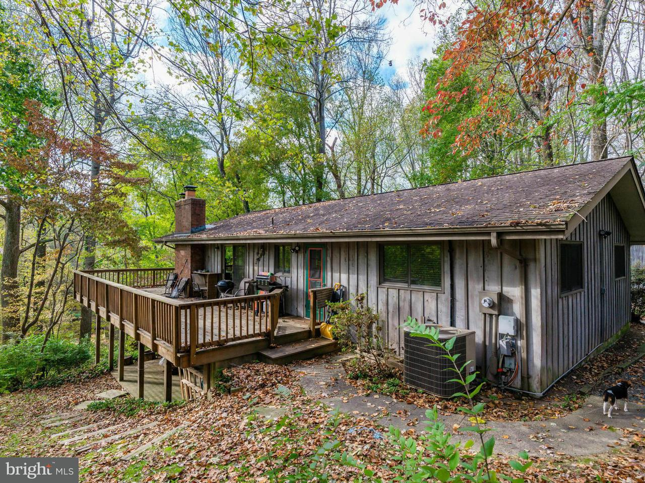 Single Family Home for Sale at 1025 MILLWOOD Road 1025 MILLWOOD Road Great Falls, Virginia 22066 United States