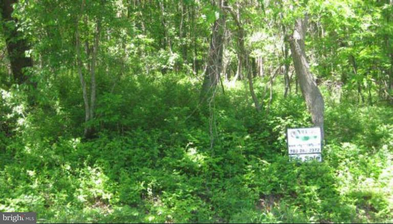 Additional photo for property listing at GREENWOOD STATION Road GREENWOOD STATION Road Greenwood, Virginia 22943 Vereinigte Staaten