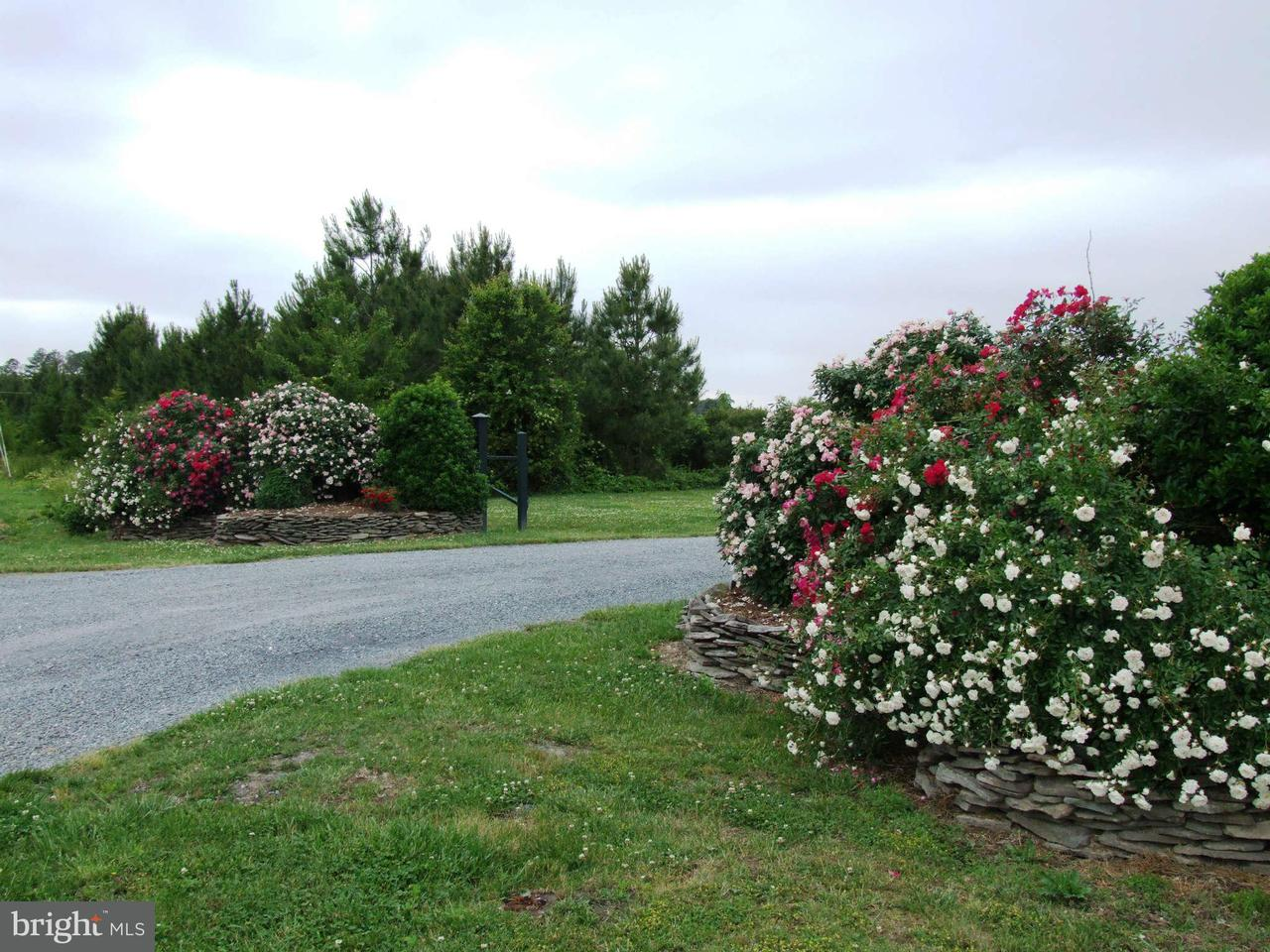 Additional photo for property listing at VILLA Road VILLA Road Easton, Maryland 21601 United States
