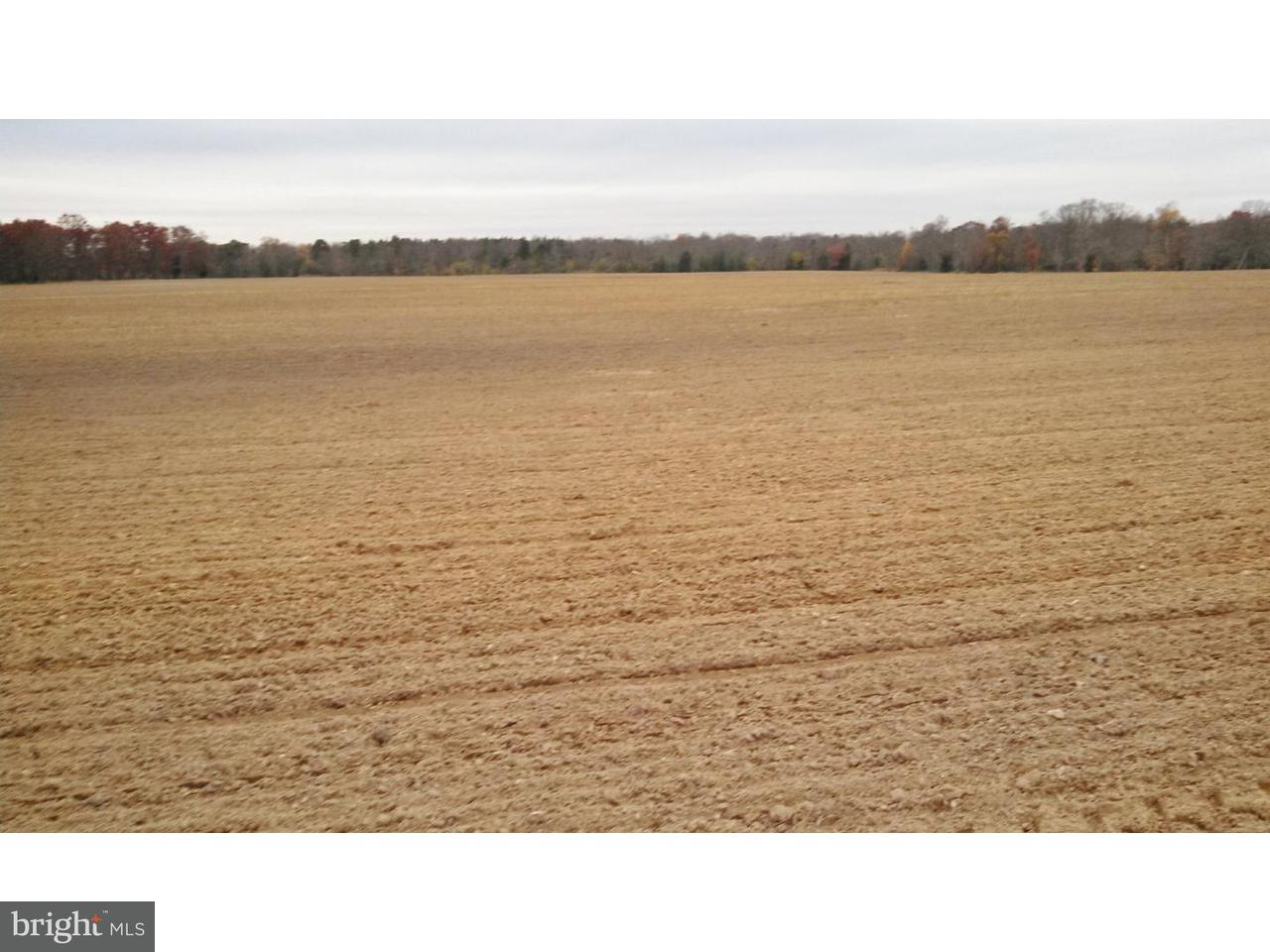 Farm for Sale at 730 BUCK Road Monroeville, New Jersey 08343 United States