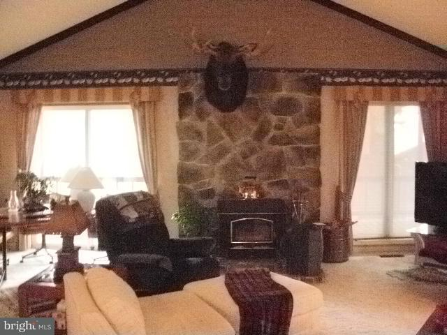 Additional photo for property listing at BRANCH MOUNTAIN LANE BRANCH MOUNTAIN LANE Mathias, Virginie-Occidentale 26812 États-Unis