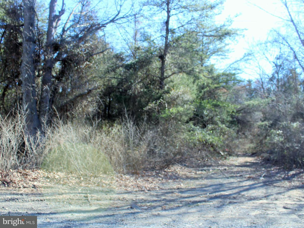 Land for Sale at 5721 Turner Rd Broad Run, Virginia 20137 United States