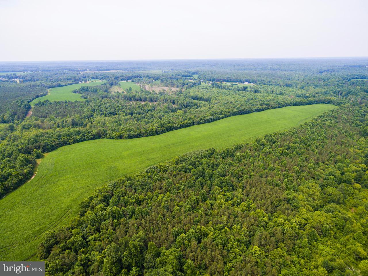 Land for Sale at 25114 Sparta Rd Milford, Virginia 22514 United States
