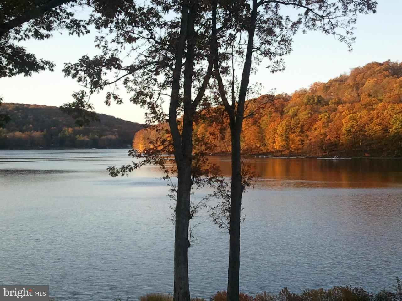 Additional photo for property listing at 78lot Daylily Cir  Terra Alta, West Virginia 26764 United States