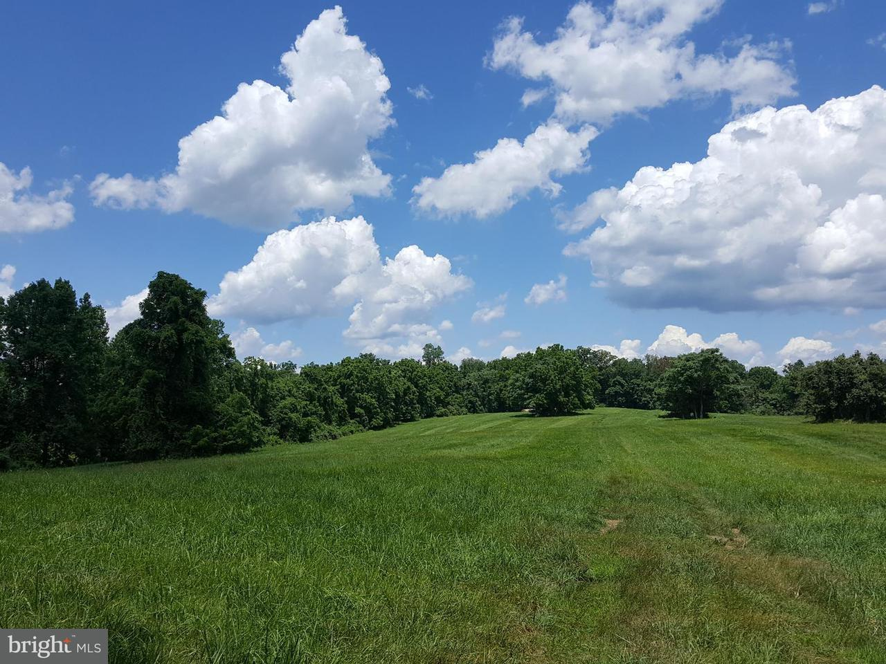 Land for Sale at 36651 MOUNTVILLE Road 36651 MOUNTVILLE Road Middleburg, Virginia 20117 United States