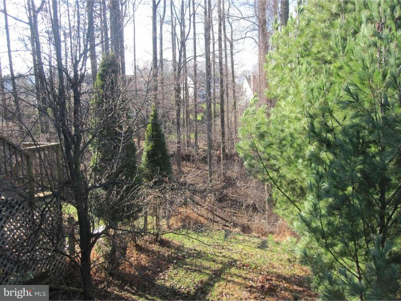 Additional photo for property listing at 800 SYCAMORE Road  Mohnton, Pennsylvanie 19540 États-Unis