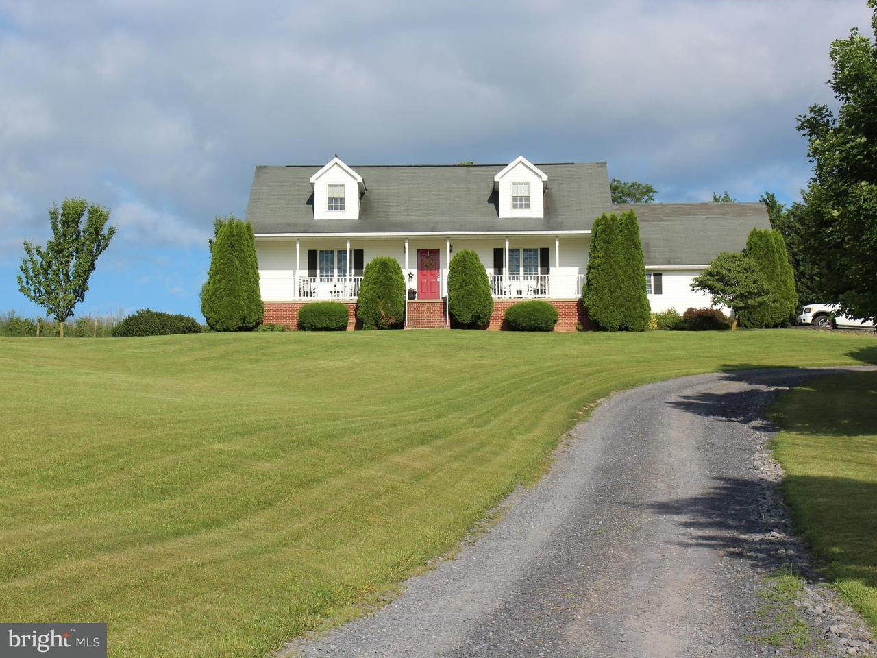 Single Family for Sale at 230 School House Ln Woodstock, Virginia 22664 United States